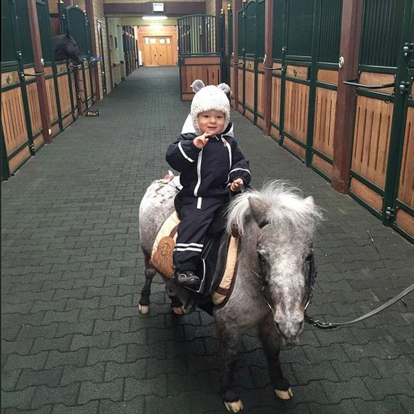 Саша уже успел познакомиться с обитателями конюшни