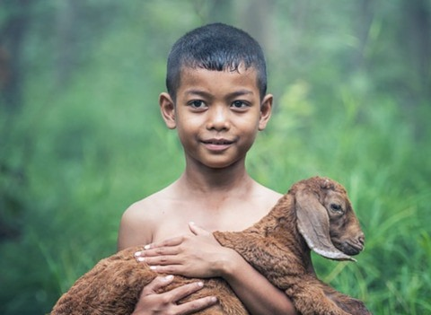 Дети с синдромом Маугли – болезнь общества или беспечных родителей