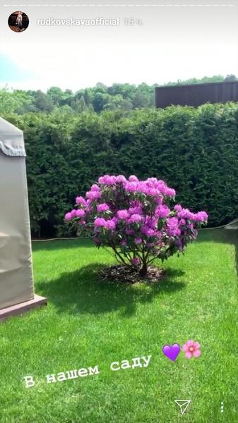 Яна Рудковская показала цветущий сад