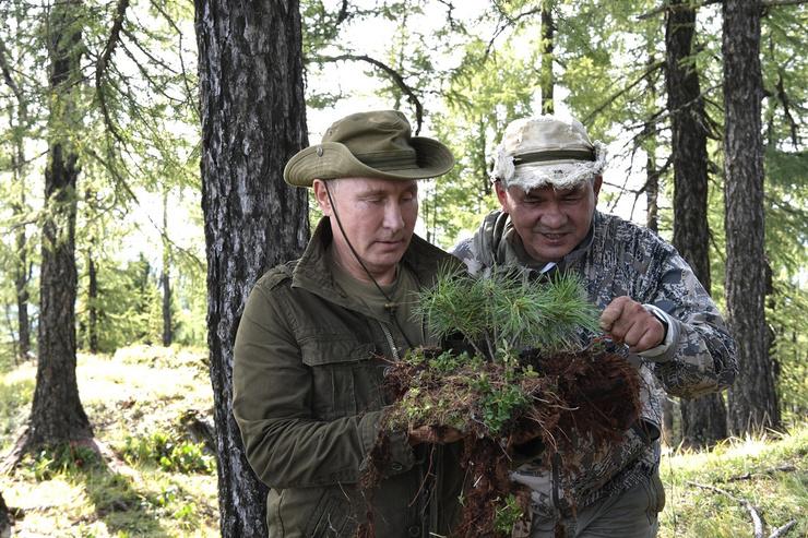 Владимир Путин и Сергей Шойгу во время прогулки по тайге