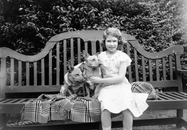 Королева с детства обожала собак