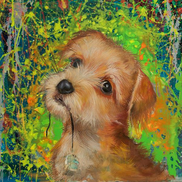 Стиль жизни: Анастасия Дубач: «Собаки не обижаются на судьбу» – фото №2