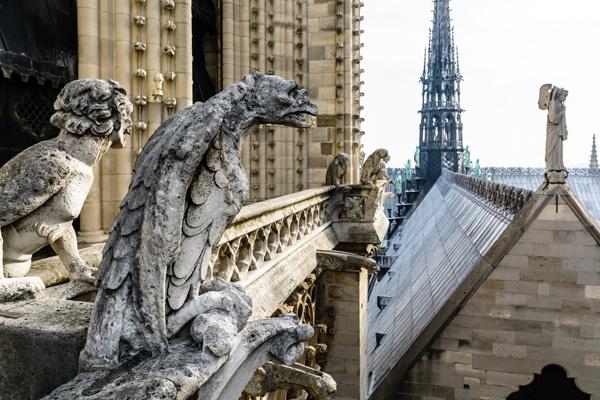 Общество: Миллионы евро на восстановление Нотр-Дама: звезды и олигархи делают пожертвования – фото №6