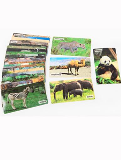 Сема обожает карточки с животными