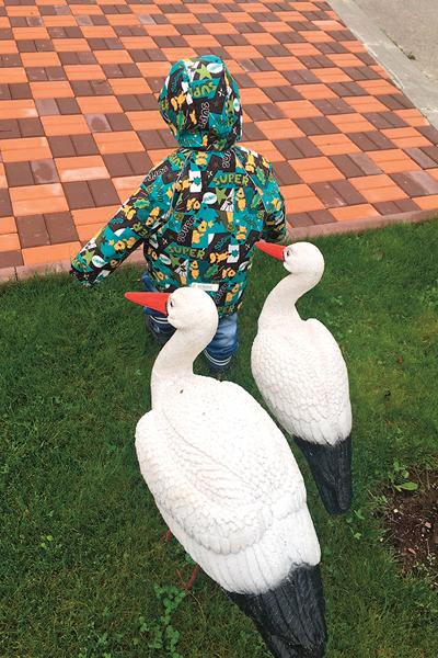 Ребенок любит гулять во дворе загородного дома, где живем с мамой, бабушкой и дедушкой
