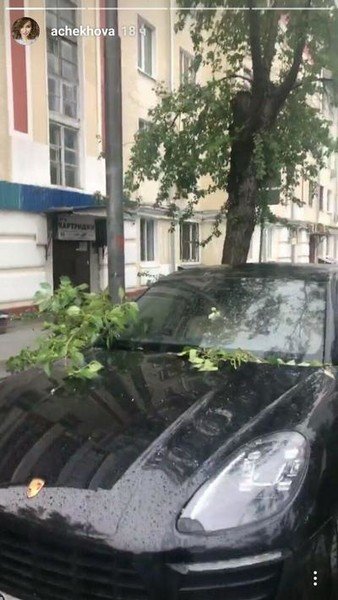 Машина Анфисы Чеховой, заваленная ветками деревьев