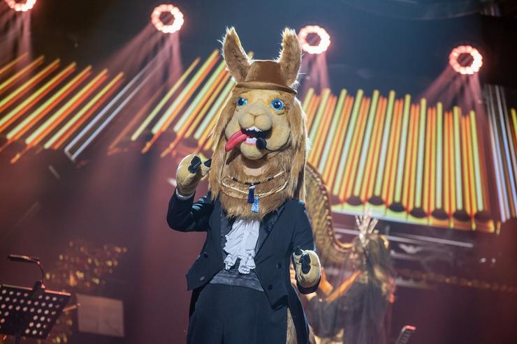 Лама был главным вокалистом проекта.