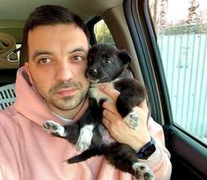 Спасти сотни собак, потратив на это состояние: история автора канала SobakaFun Александра Мезенцева